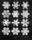 Bentley's Snowflakes by W. A. Bentley (Mixed media product, 2006)