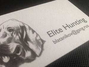 Hostel elite hunting business cards x 40 replica prop halloween image is loading hostel elite hunting business cards x 40 replica colourmoves