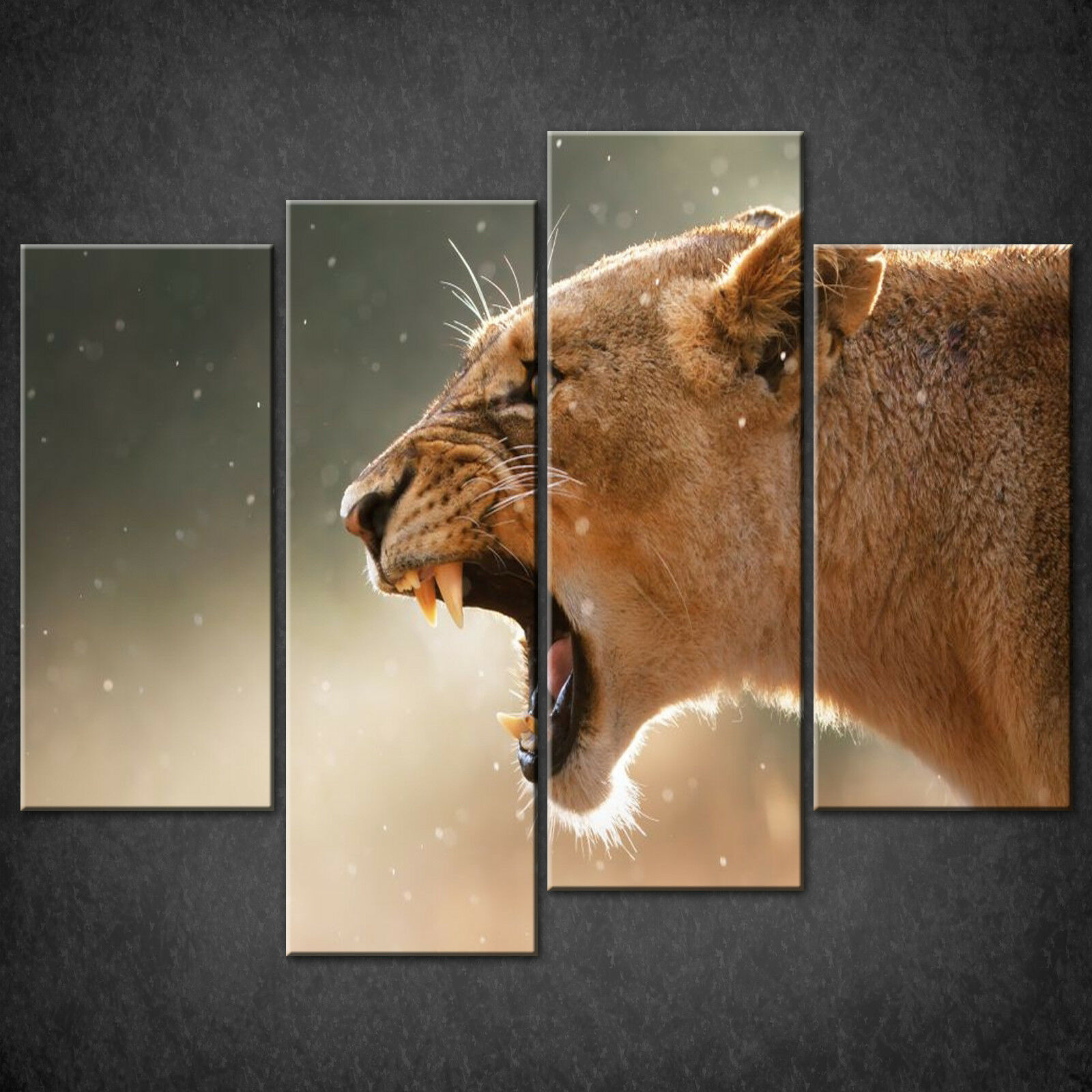 ANGRY LIONESS CANVAS PRINT PICTURE WALL HANGING ART HOME DECOR FREE DELIVERY