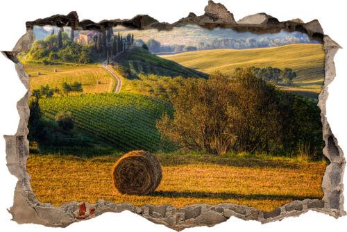 murales Toscana paisaje casa-gran avance en la 3d-look decoración