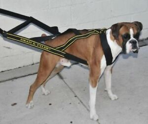 Dean-amp-Tyler-DT-Pro-Pull-Professional-Pulling-Sledding-Weight-Training-Harness