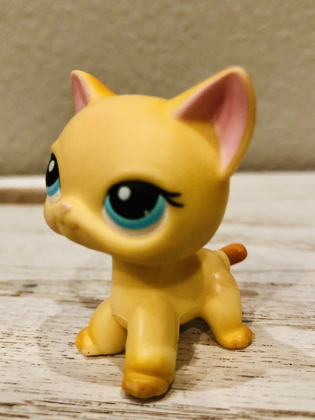 Authentic Authentic Authentic Littlest Pet Shop Short Haired Cat Brooke Hayes Raceabout Ranch 468f1b