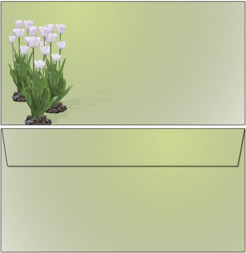 50 Briefumschläge Motiv weiße Tulpen Frühling DL oF lila Ostern Blätter neu 6652