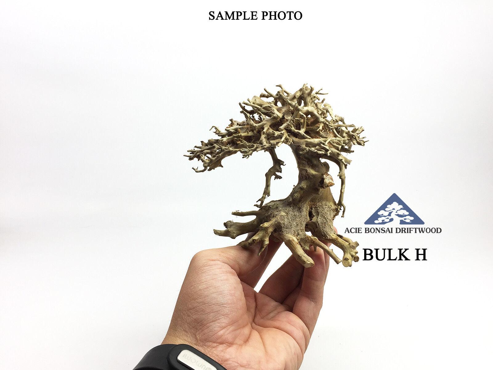 Aquarium Bonsai Driftwood Moss Tree Nano Fish Shrimp   Make To Order   - Bulk H