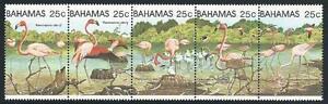 Bahamas De 1982 ** Cachet Minr. 507-511 - Flamants Roses! Riche En Splendeur PoéTique Et Picturale