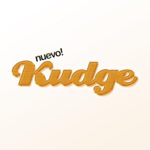 Kudge.com Pronounceable Like Fudge Judge Nudge! Brandable 5 Letter Domain Name