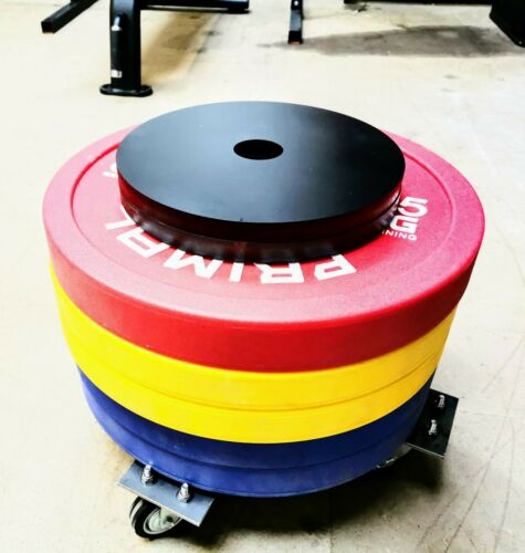 """2/"""" 2X 10KG Steel Olympic Weight Plate"""