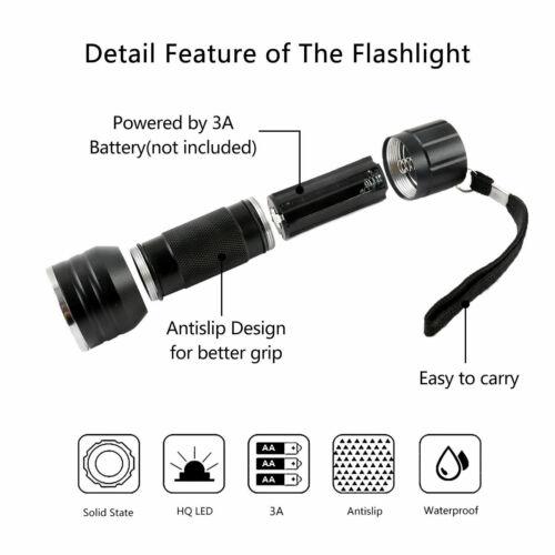 MAXCATCH Fliegenbinden UV Licht /& UV Klebstoff Injektion Combo