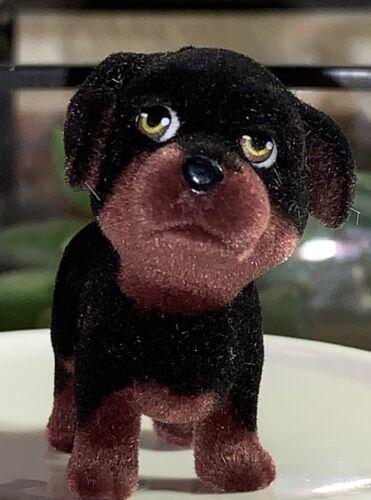 Puppy in My Pocket—Exclusive Rottweiler Helga
