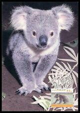 AUSTRALIA MK FAUNA KOALA TIERE MAXIMUMKARTE CARTE MAXIMUM CARD MC CM h0691