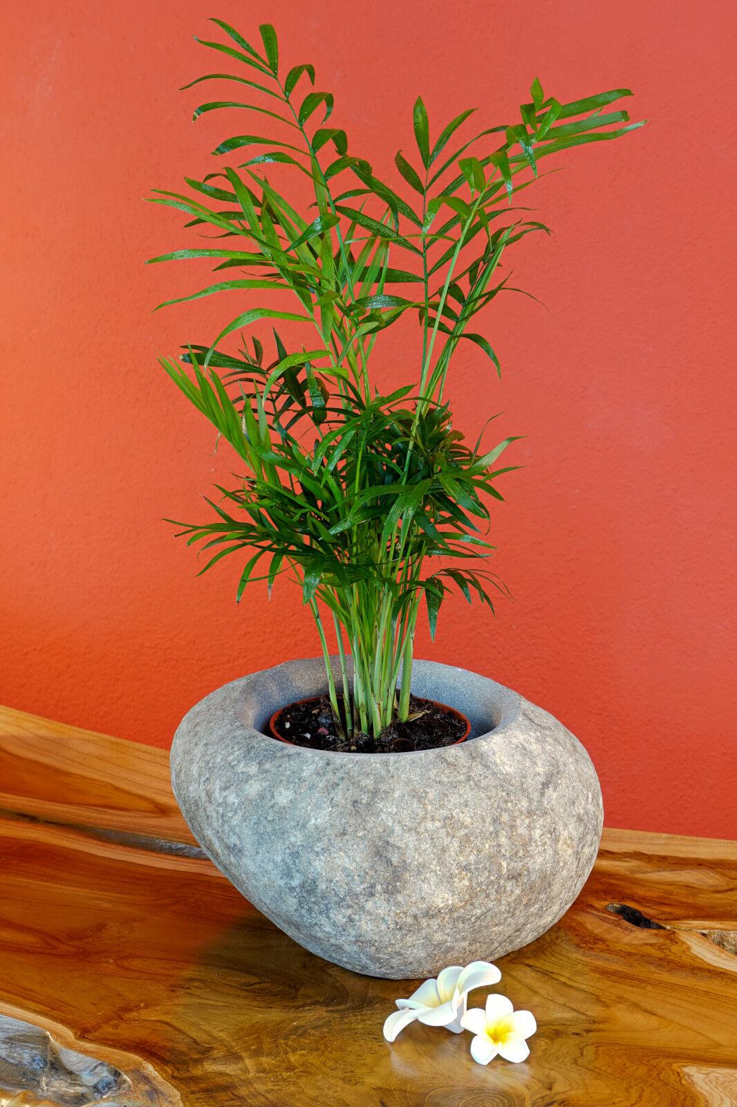 VASO PIETRA vaso fiori grigio fiori vaso fiori vaso fioriera grande