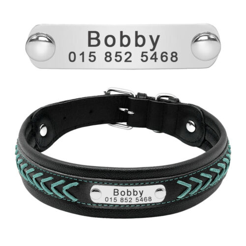 Padded Leather Braided Personalized Dog Collar Name ID for Medium Large Dogs