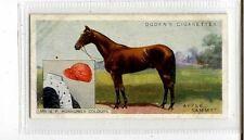 (Jb3427-100)  OGDENS,DERBY ENTRANTS 1926,APPLE SAMMY,1926#1