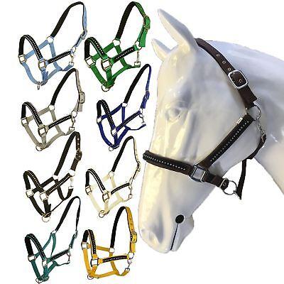 Imparato White Horse Equitazione šet Pony Cob Cavallo Halter Equitazione Imbottito Capezza- Una Vasta Selezione Di Colori E Disegni