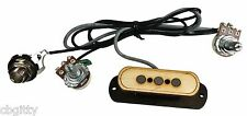 """Electric Delta"" 3-pole Cigar Box Guitar Single Coil Pickup with Volume & Tone"