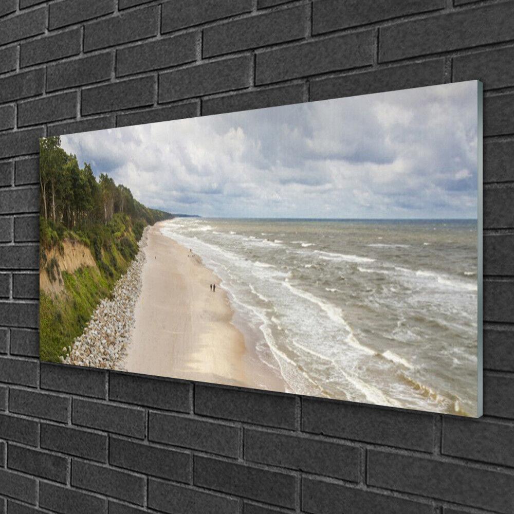 Image sur verre Tableau Impression 100x50 Nature Plage Mer Arbre