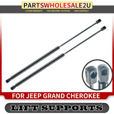 2pc Hatch Lift Support Struts for Jeep Cherokee 1997-2001 Gas Springs xv