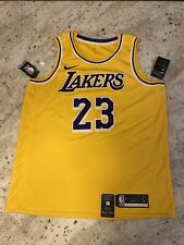 Nike Men's Los Angeles Lakers Lebron James Icon Edition Jersey ...