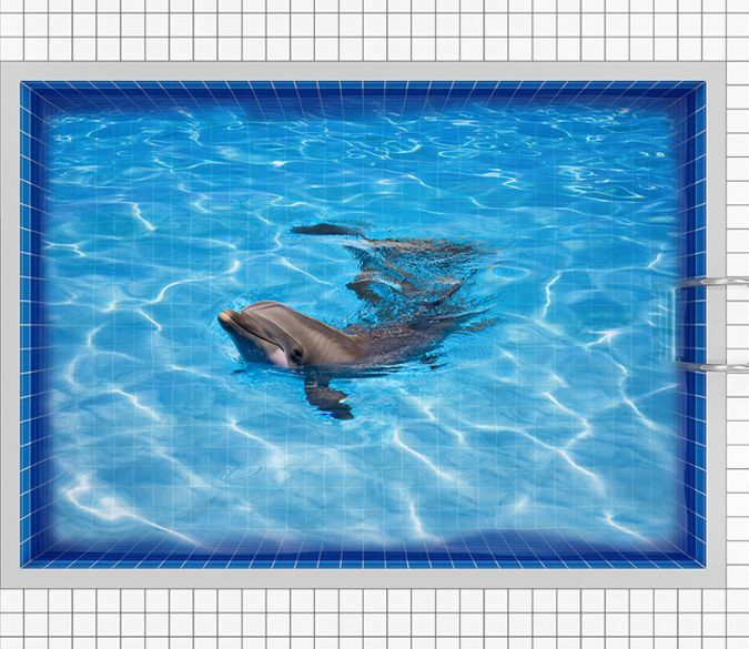 3D Playing Pond Dolphin Floor WallPaper Murals Wall Print Decal 5D AJ WALLPAPER