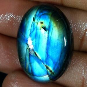 39-70Cts-Natural-Multi-Fire-Spectrolite-Labradorite-Oval-Cabochon-Loose-Gemstone