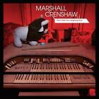 I Dont See You Laughing Now von Marshall Crenshaw (2014)