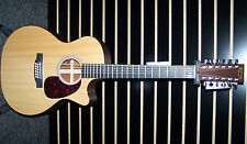 Martin Performing Artist GPC12PA4 acoustic/electric 12 string guitar w/case