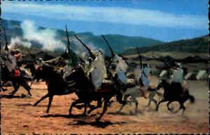 Marokko-Afrika-Africa-Postcard-Reiter-mit-Gewehren-auf-Pferden-Pferd-Horses