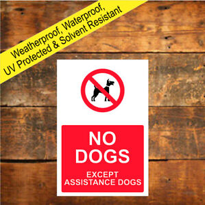 No Dogs Symbol Except Assistance Dogs Sign Weatherproof sign or sticker 9492