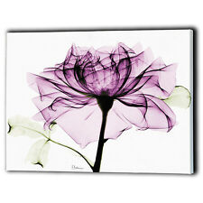 Purple Floral Canvas Framed Love Flower - Print Wall Art Gifts - Ready To Hang