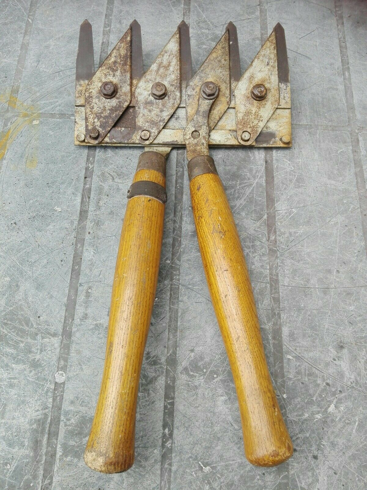 Antique 'Astor Shears for Hedge & Grass Made in England'