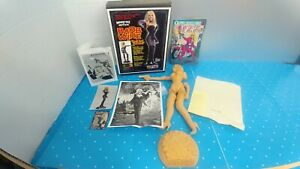 1-5-Barb-Wire-034-Don-039-t-Call-Me-Babe-034-Pamala-Anderson-Resin-Model-Kit-Shelf-I4