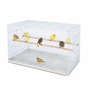 Kookaburra Saule Breeding-holding Cage Pour Finch Canary Perruche Calopsitte élégante Etc-afficher Le Titre D'origine 5s7hznxx-10040620-455035059