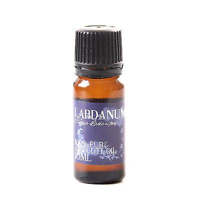 Labdanum Absolute Oil - 100% Pure - 10ml (AO10LABD)