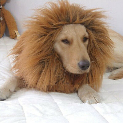 Brown Fancy Dress Up Pets Costume Halloween Lion Mane Wig for Large Dogs Cat Hot