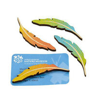 Design Ideas Colorful Feather Magnet Feathers Magnets Set Of 4 3205053