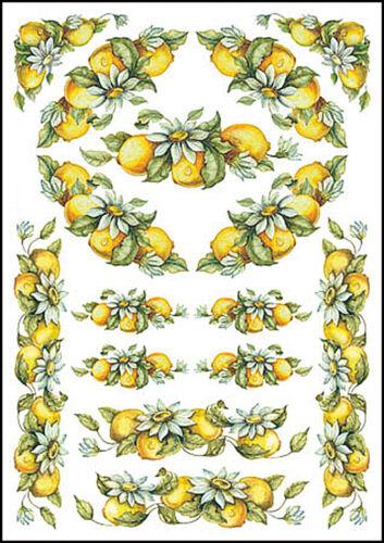 "Keramik 14,5 x 21 cm NEU Mitchell Ceramic Transferbogen /""Lemon/"" für Porzellan"