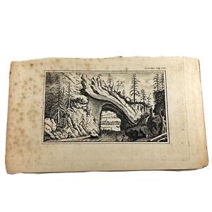 Authentic-Antique-1700-1800-s-Engraving-On-Paper-Manuscript-Artwork-Art-Old-E