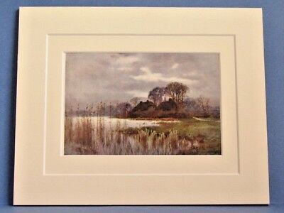 BEAULIEU MILL POND NEW FOREST VINTAGE DOUBLE MOUNTED WATER COLOUR PRINT 10X8 OLD