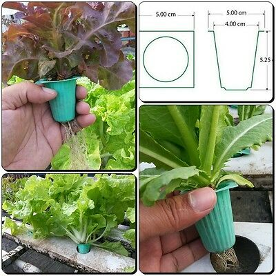 50 EA MESH NET CUP POT  BASKET HYDROPONIC AEROPONICS BASKET PLANT GROW KIT