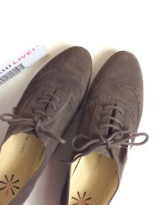 New-Womens-ISAAC-MIZRAHI-LIVE-6-6-5-W-BROWN-SUEDE-OXFORD-SHOE-Casual-Flat-WIDE