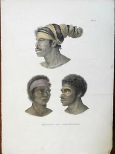 Australian New Holland Aborigines Male Portraits c. 1850 ethnic view print