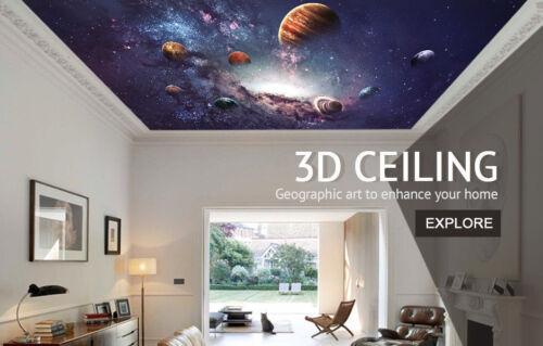 Details about  /3D Orange Fox 109 Wallpaper Murals Floor Wall Print Wall Sticker AU Sunmer