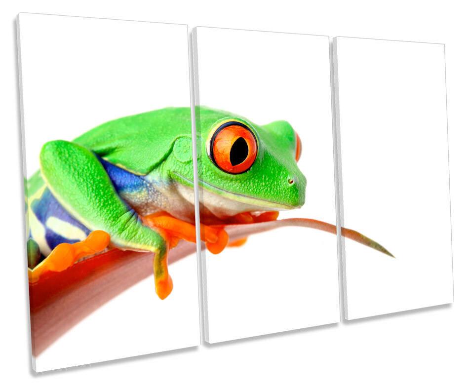 Grün Frog Picture TREBLE CANVAS WALL ART Print