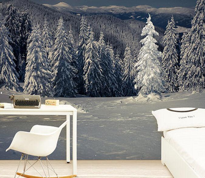 3D inverno 996 Parete Murale Foto Carta da parati immagine sfondo muro stampa