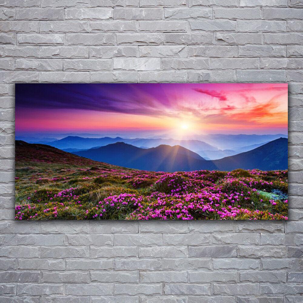 Glasbilder Wandbild Druck auf Glas 120x60 Gebirge Wiese Blaumen Landschaft