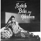 Sahib Bibi Aur Ghulam: The Original Screenplay by Dinesh Raheja (Mixed media product)