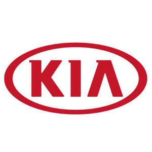 Genuine Kia Filter Assembly Air 97133-L1000