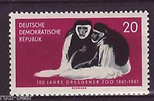 DDR Nr.   826  **  Kilimandscharo Guerenzas