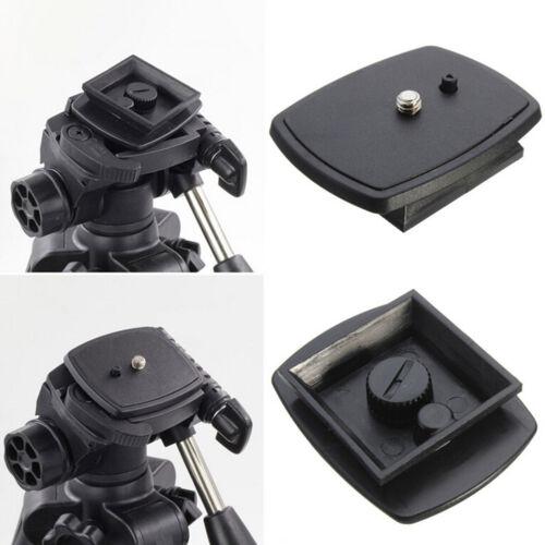 Stativ Schnellwechselplatte Schraubadapter Montagekopf für DSLR SLR Kamera O OX