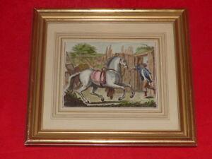 Rider-Horses-Pretty-Engraving-Antique-Enhanced-Colours-Frame-Golden